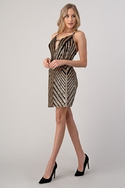 Minuet Chevron Sequin Dress - Front full body