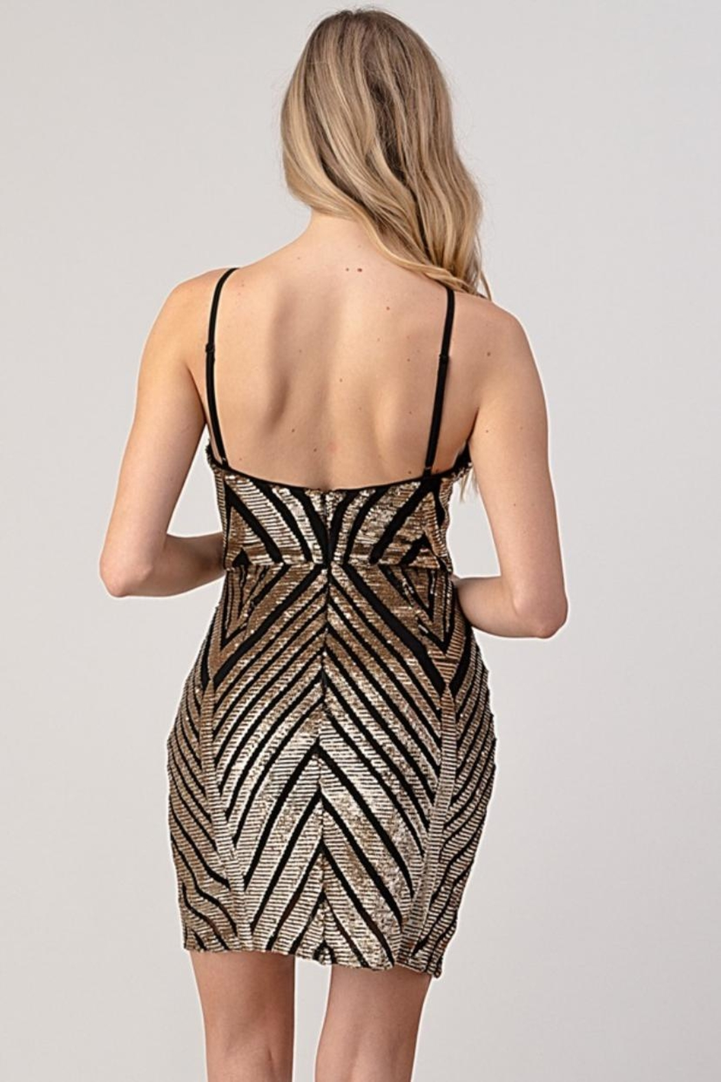 Minuet Chevron Sequin Dress - Back Cropped Image