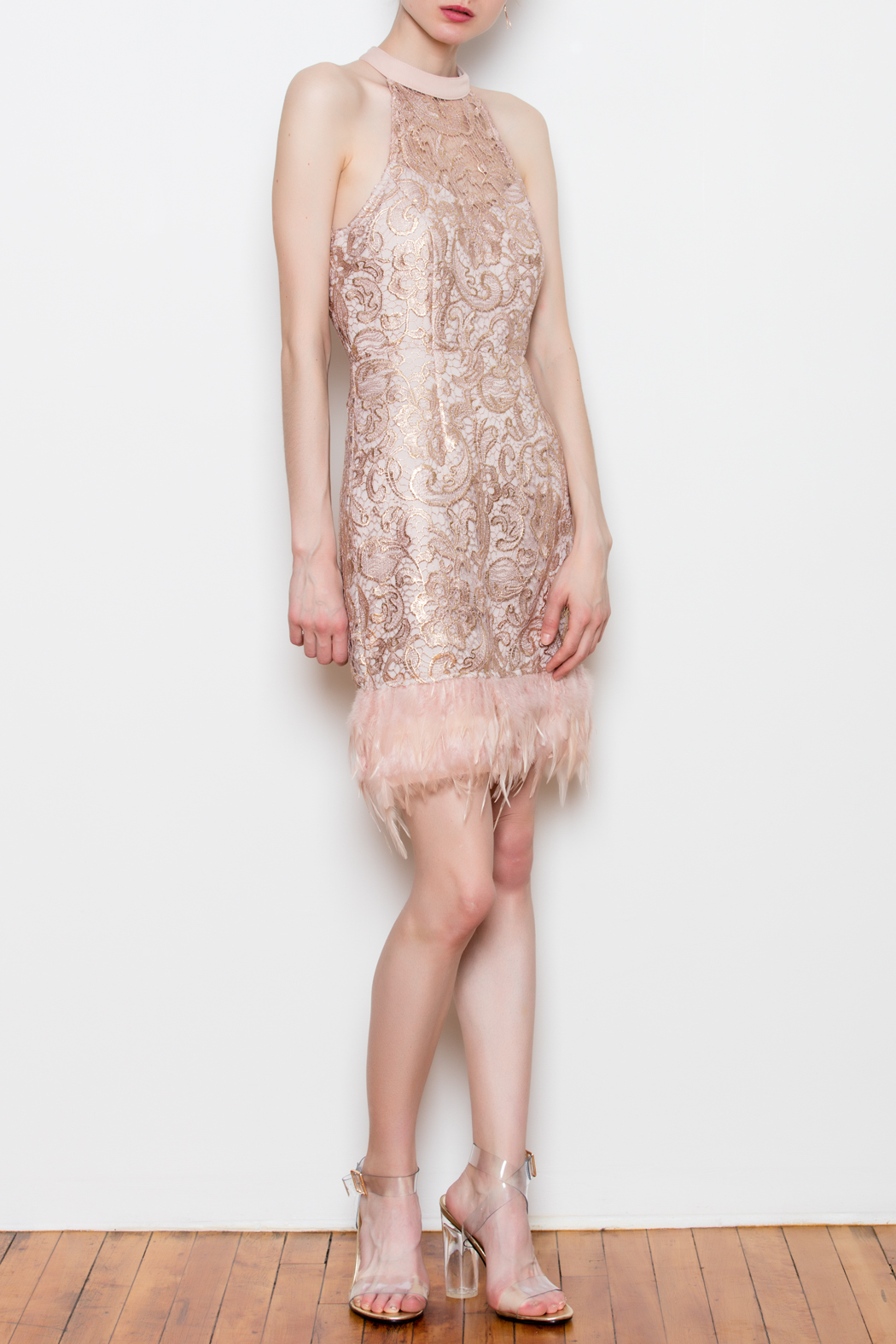 Minuet Feather Trim Dress - Front Full Image