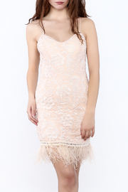 Minuet Lace Featherd Trim Dress - Product Mini Image
