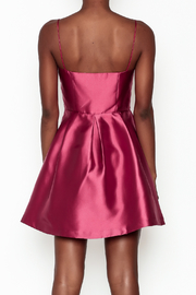 Minuet Vespa Dress - Back cropped