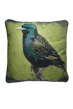 Shoptiques Product: Throw Pillow: Starling