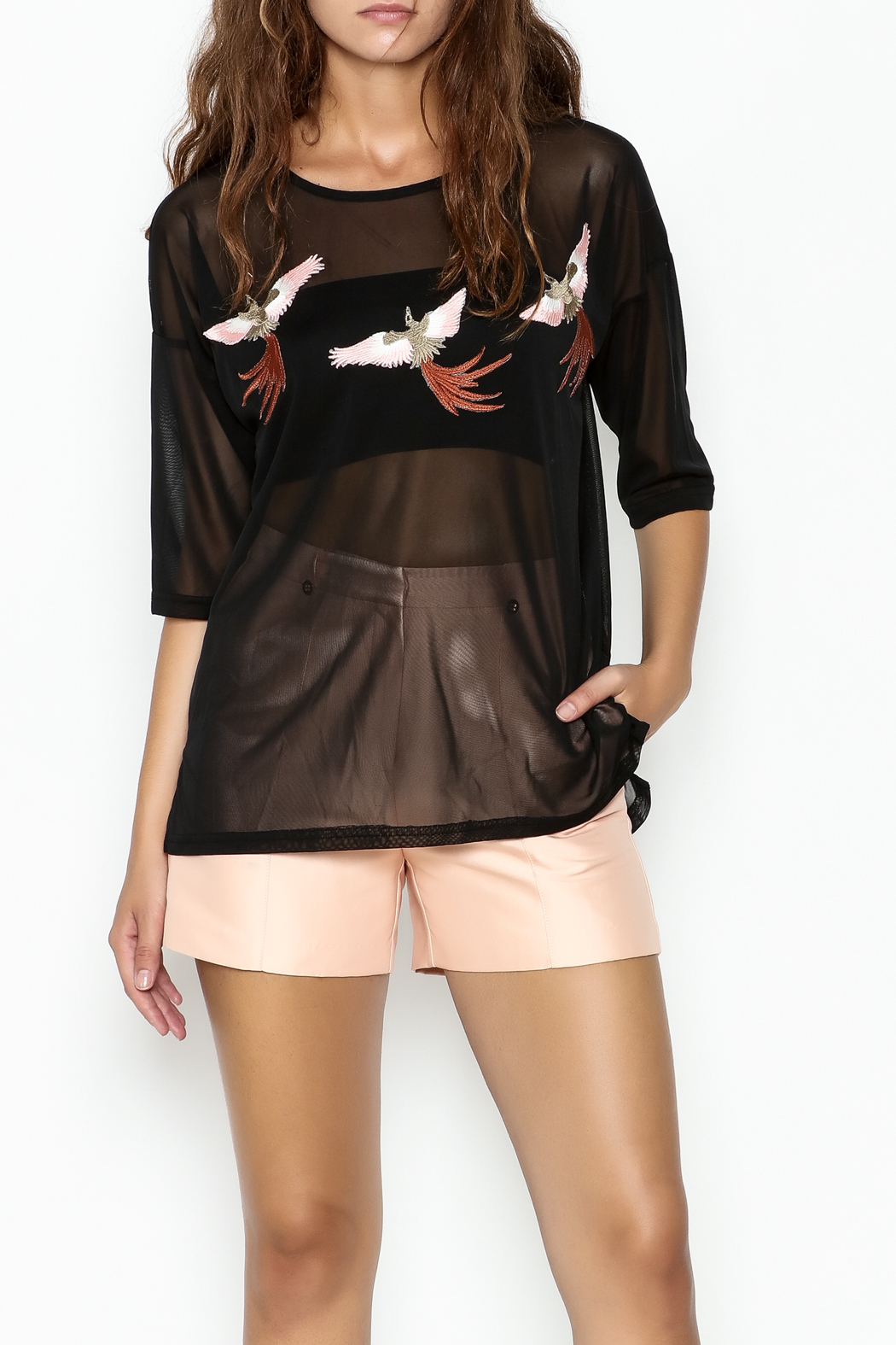 Miss Love Black Sheer Bird Tee - Front Cropped Image
