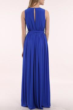 miss avenue  Chiffon Maxi Dress - Alternate List Image