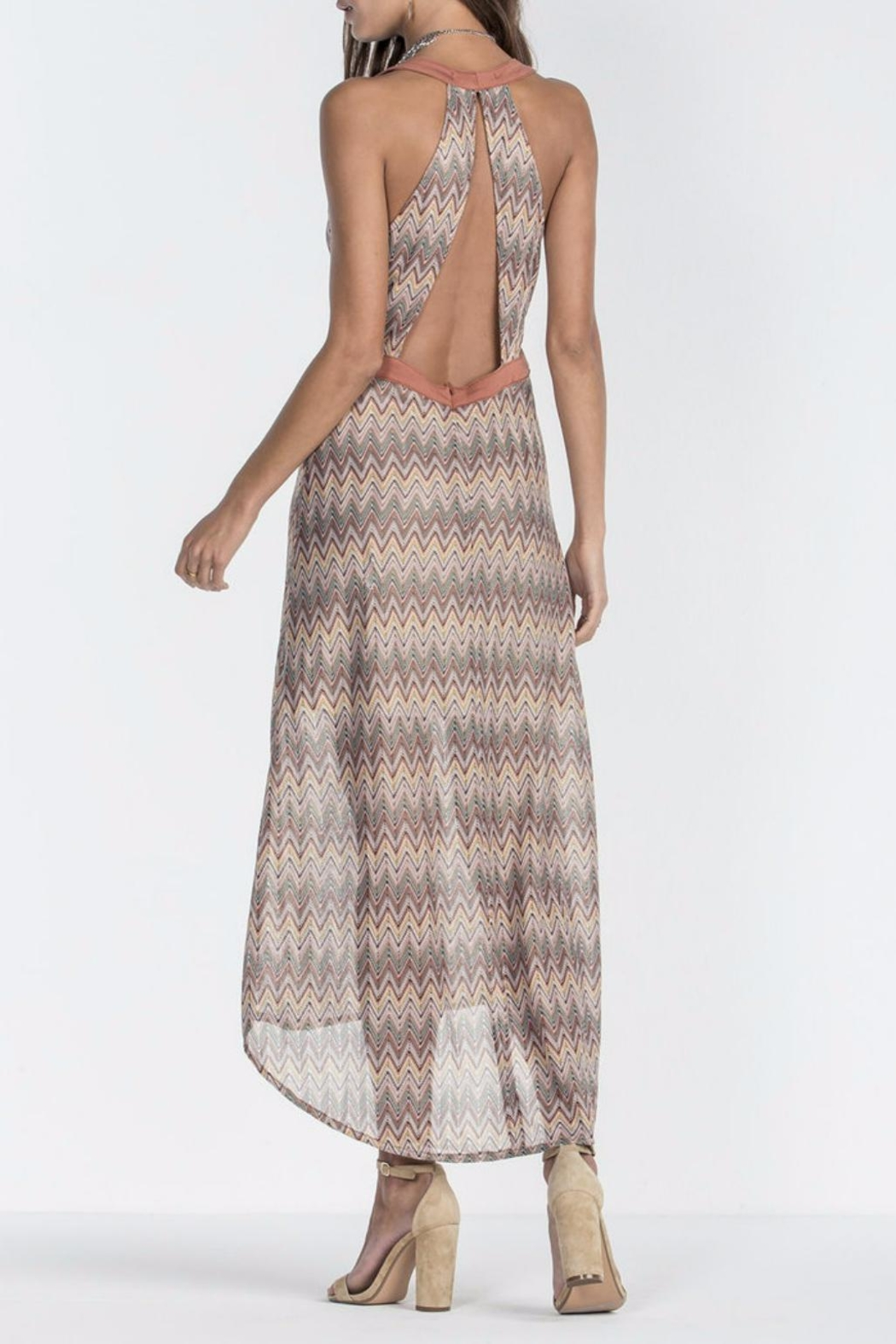 Miss Me Retro Maxi Dress - Side Cropped Image