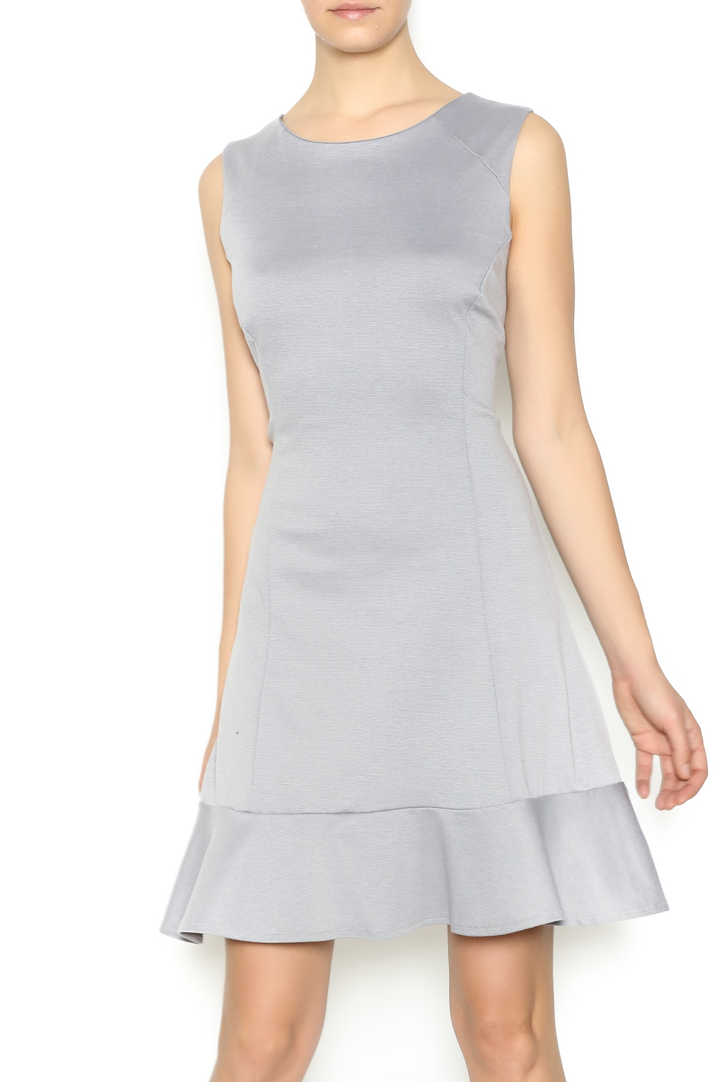 Missy Robertson Grey Dress - Front Cropped Image