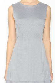 Missy Robertson Grey Dress - Other