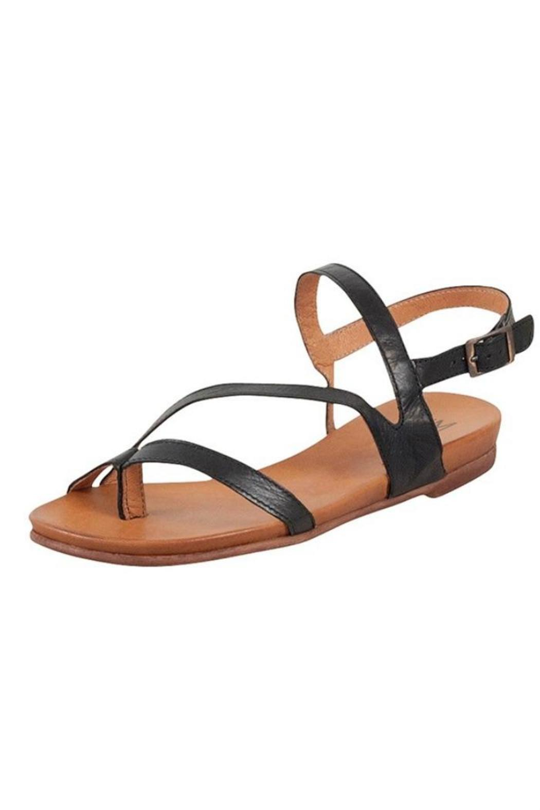 Miz Mooz Alana Sandal From Providence By Queen Of Hearts