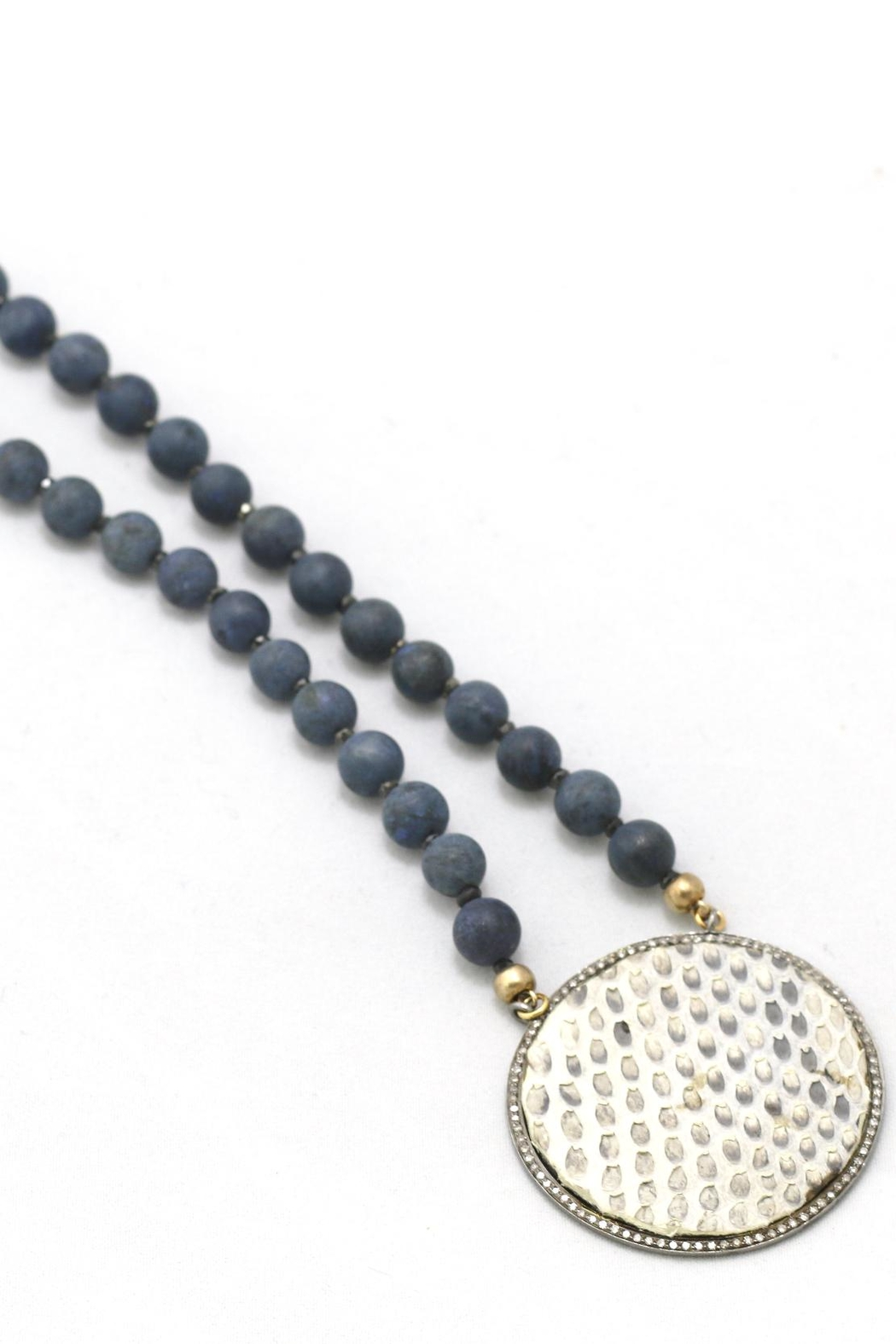 Maria Lightfoot Python Disc Necklace - Front Cropped Image