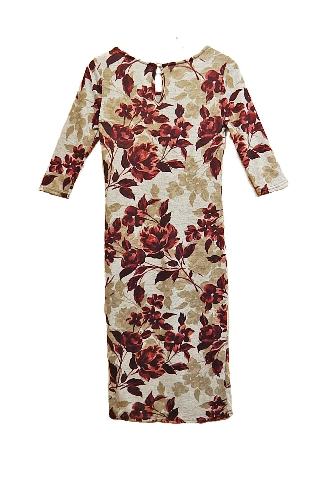 Mlle Gabrielle Burgundy Floral Dress - Front Full Image