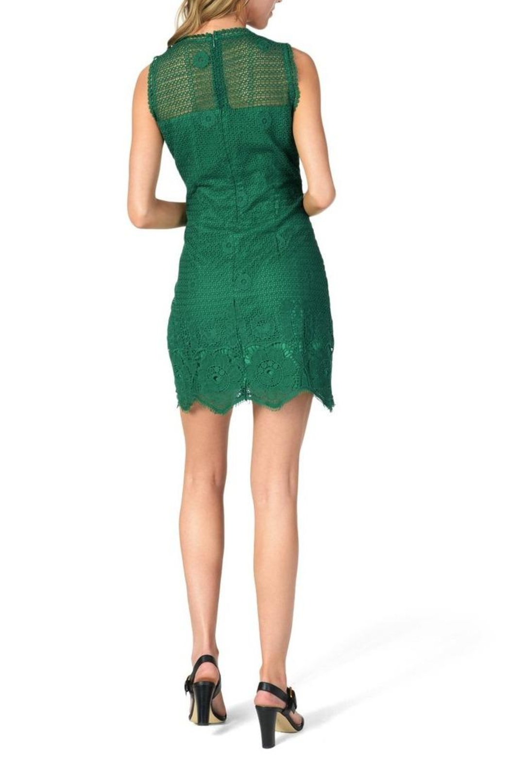 Cupcakes & Cashmere Mollie Lace Dress - Side Cropped Image
