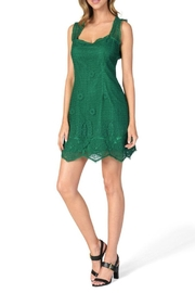 Cupcakes & Cashmere Mollie Lace Dress - Front cropped