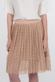 Molly Bracken Crochet Overlay Skirt - Product Mini Image
