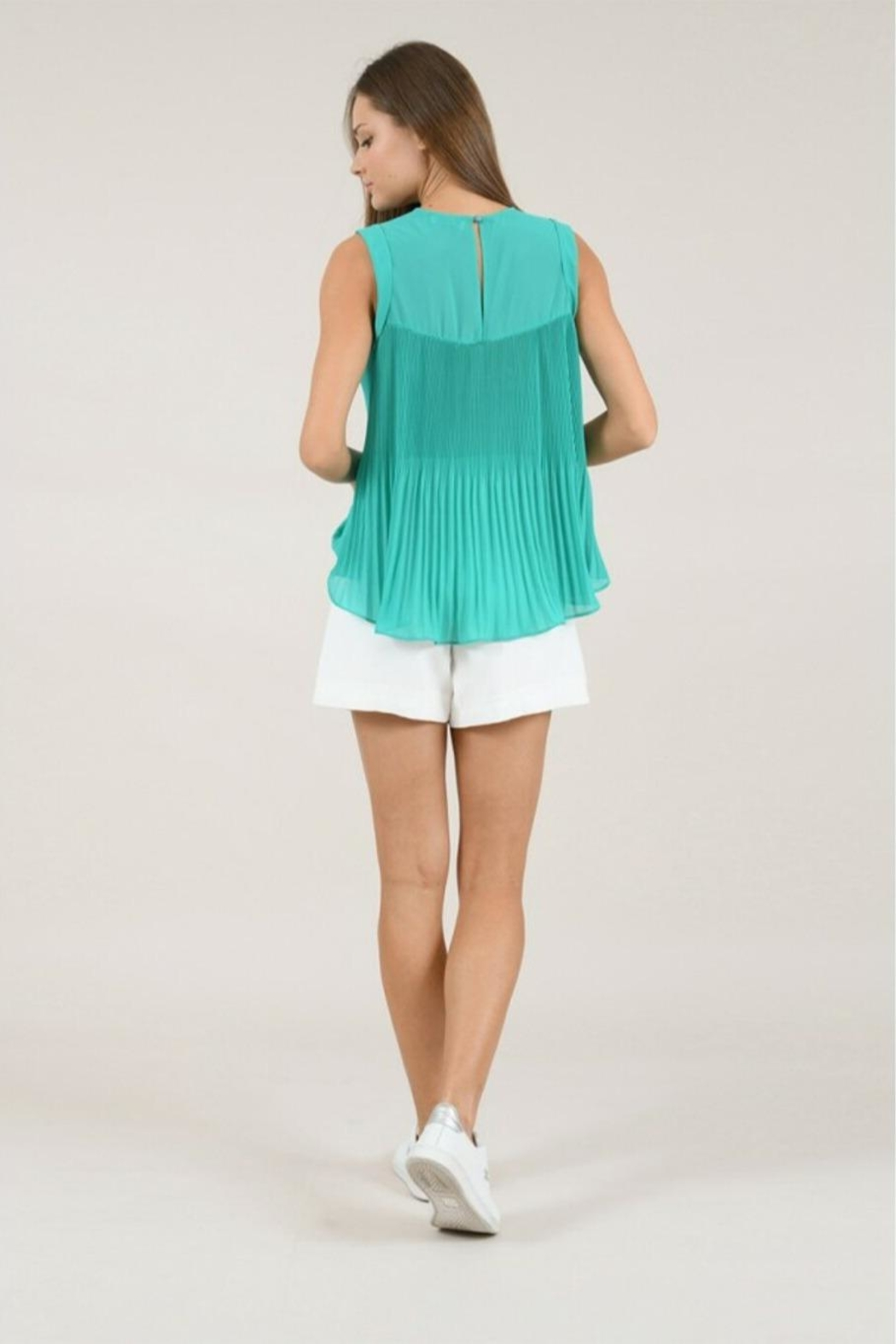 Molly Bracken Pleated Flared Top - Side Cropped Image