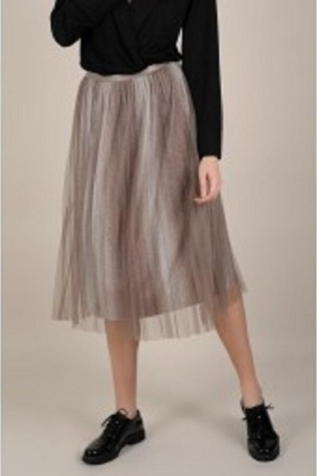 Molly Bracken Sparkly Tulle Ombre-Skirt - Main Image