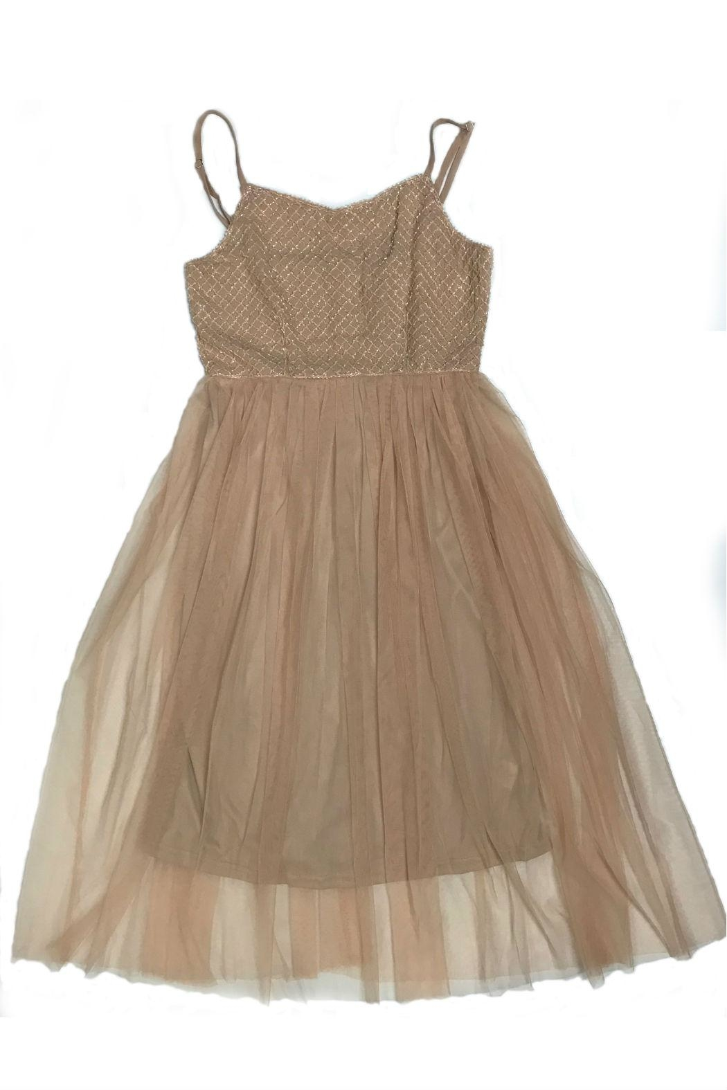 Molly Bracken Tulle Cocktail Dress - Front Cropped Image