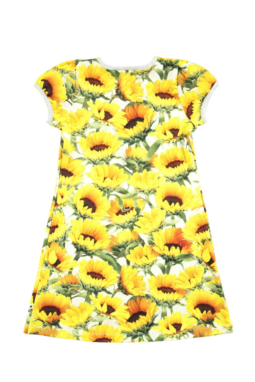 Molo Camellia Sunflowers Dress - Front Full Image