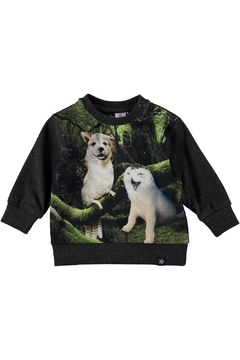 Shoptiques Product: Laughing Animals Sweater