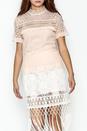 MOMNI BOUTIQUE Aleandra Lace Top - Front cropped