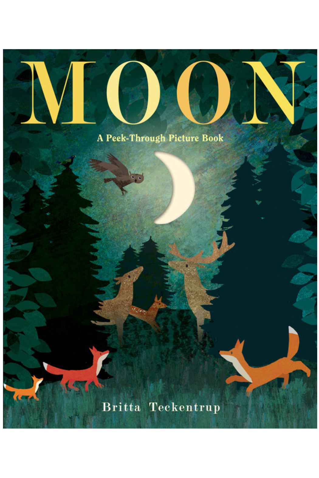 Penguin Books Moon: A Peek-Through Picture Book - Main Image