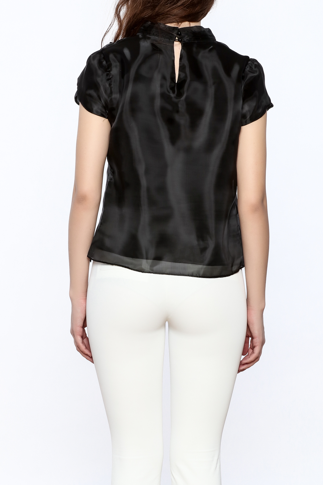 Moon Collection Silky Cap Sleeve Blouse - Back Cropped Image