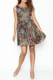 Moon Floral Stripe Dress - Front cropped