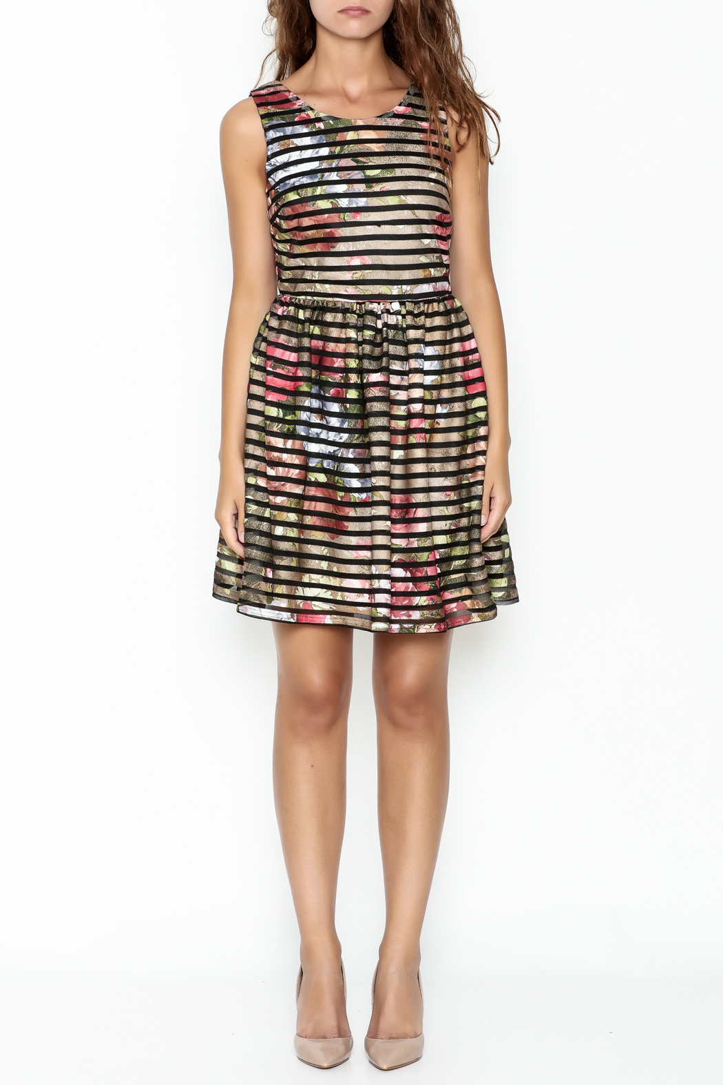 Moon Floral Stripe Dress - Front Full Image