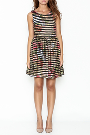 Moon Floral Stripe Dress - Front full body