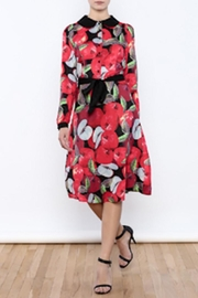 Moon Collection Vintage Apple Dress - Front cropped