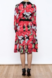 Moon Collection Vintage Apple Dress - Side cropped