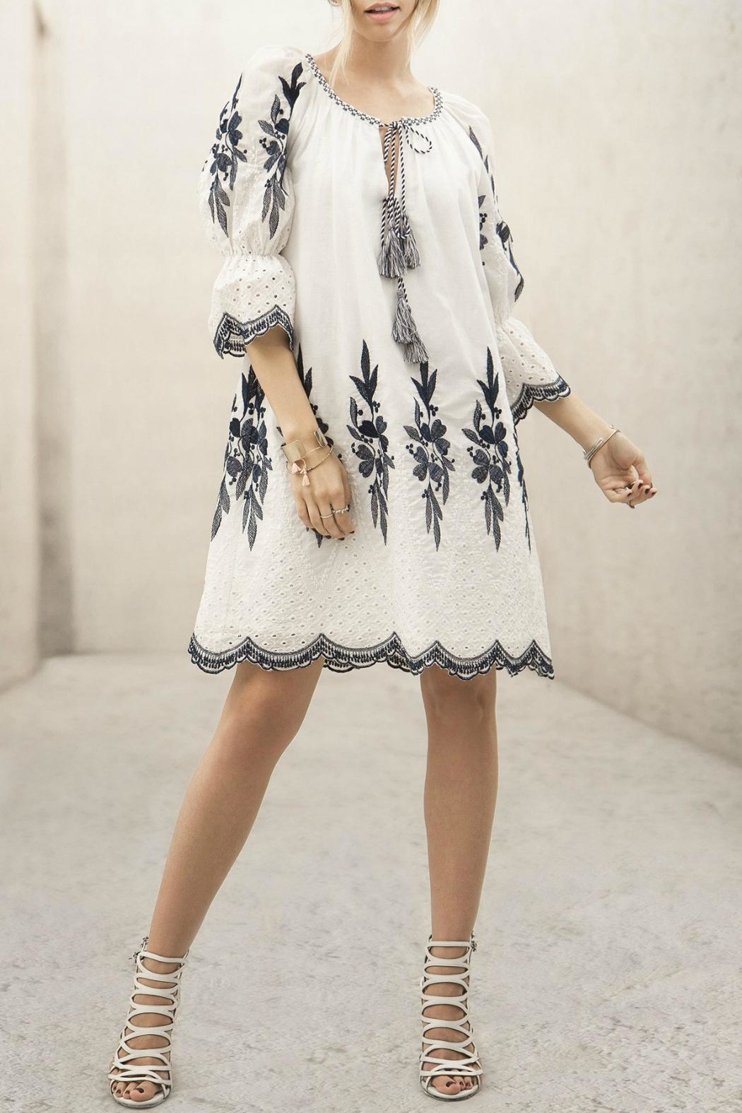 Moon River Embroidered Dress - Main Image
