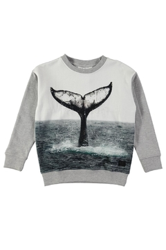 Shoptiques Product: Morell Sweatshirt