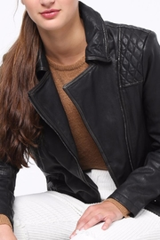 Movint Bike Leather Jacket - Back cropped