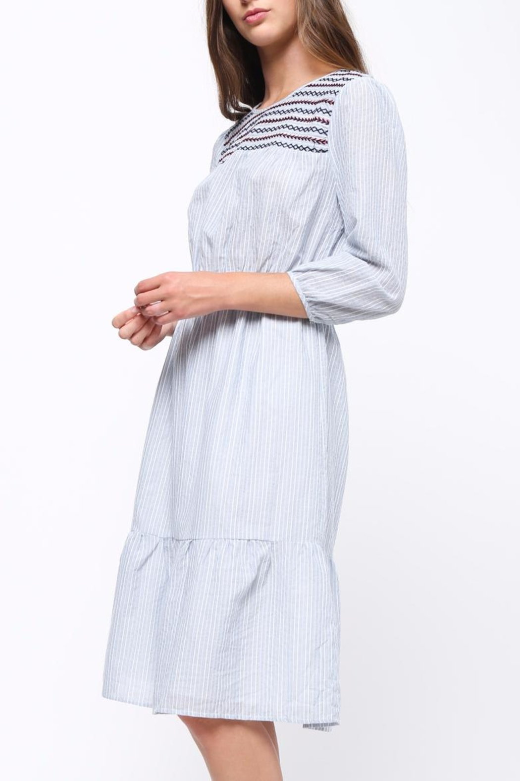 Movint Embriodery Shirring Dress - Side Cropped Image