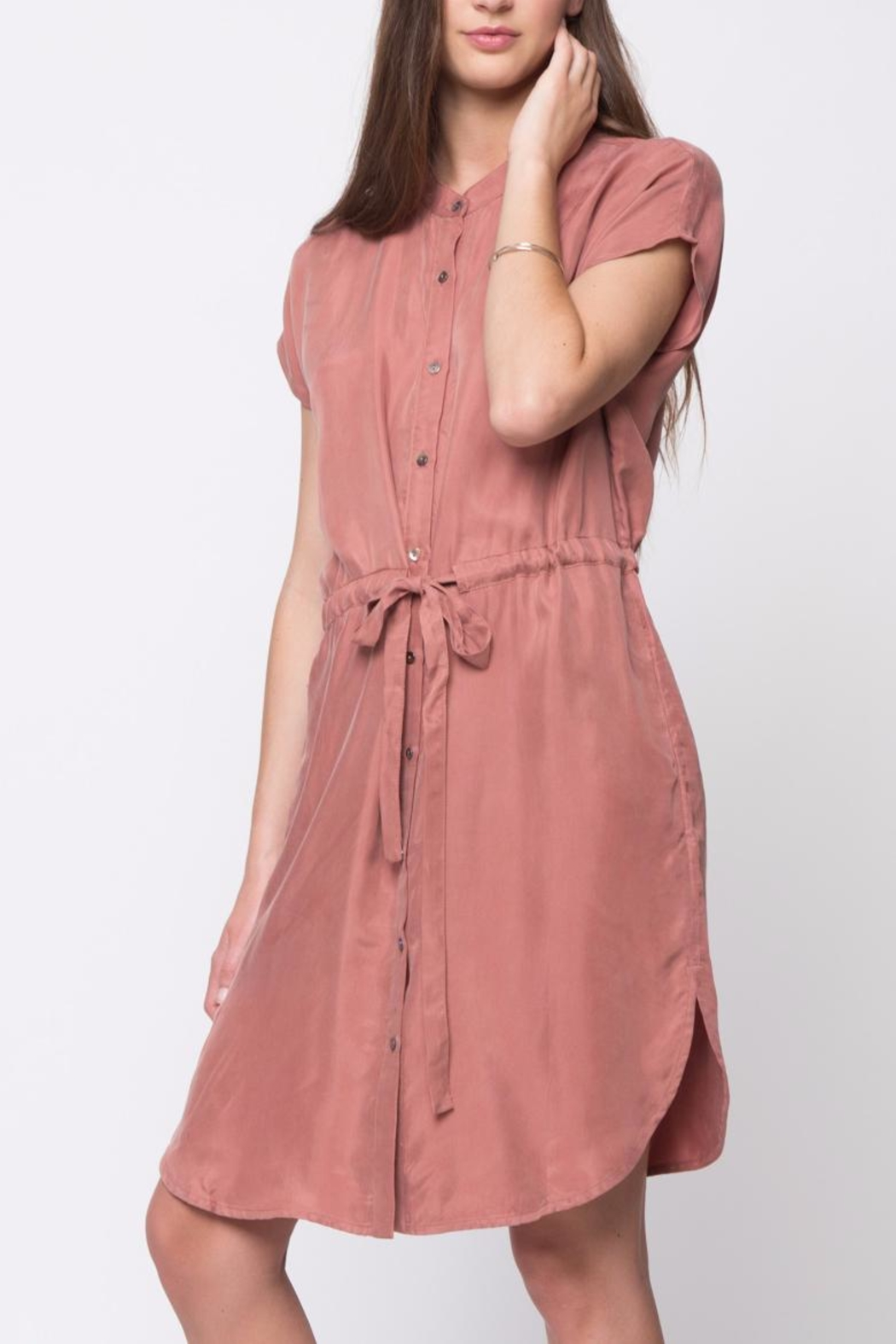 Movint Mandarin Collar Dress - Side Cropped Image