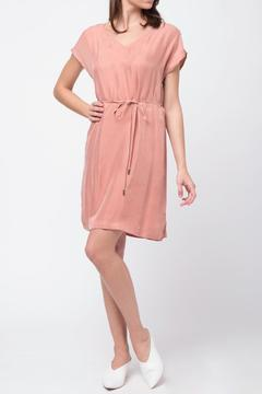 Shoptiques Product: Mauve Mini Dress