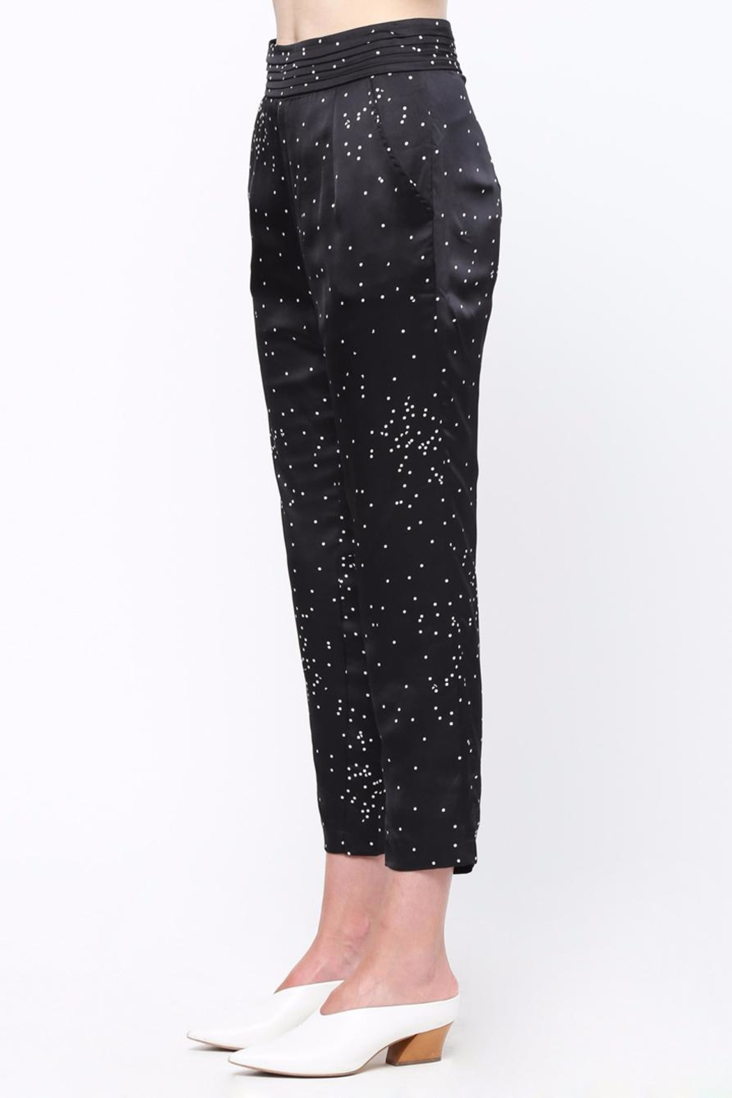 Movint Pin Tuck Trousers - Side Cropped Image