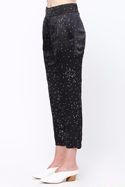 Movint Pin Tuck Trousers - Side cropped