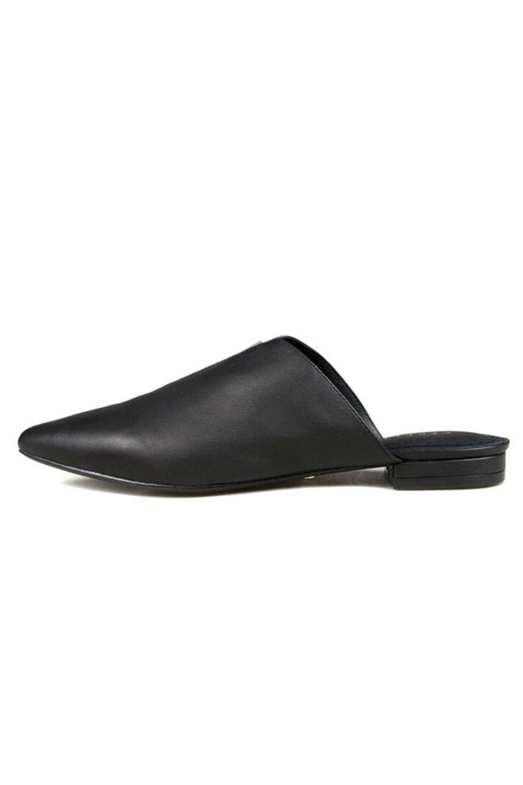 Cecelia New York Moxy Black Mule - Main Image