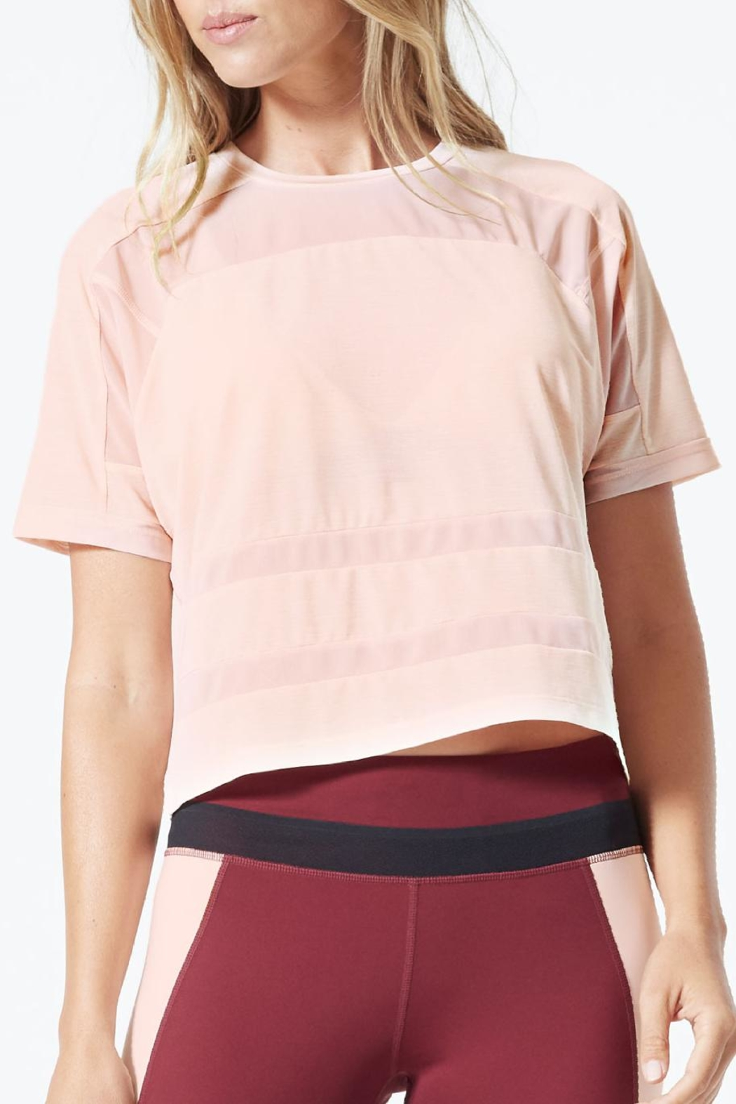 MPG Sport Cropped Mesh T Shirt - Main Image