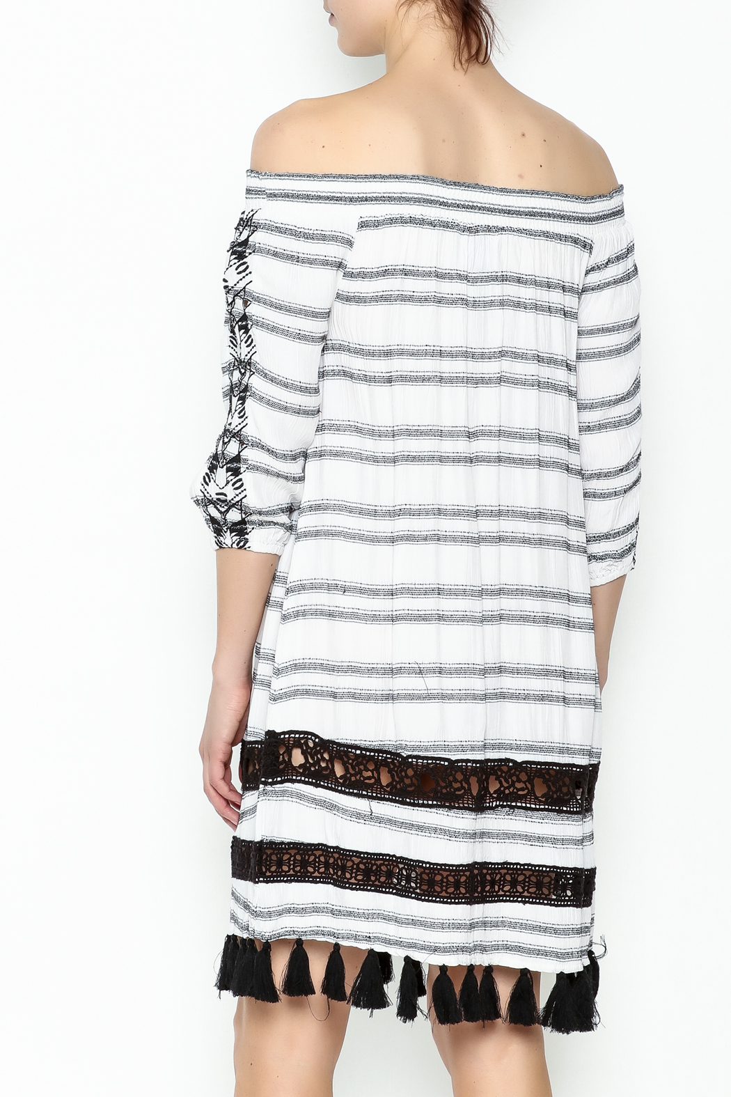 Muche et Muchette Striped Embroidered Dress - Back Cropped Image