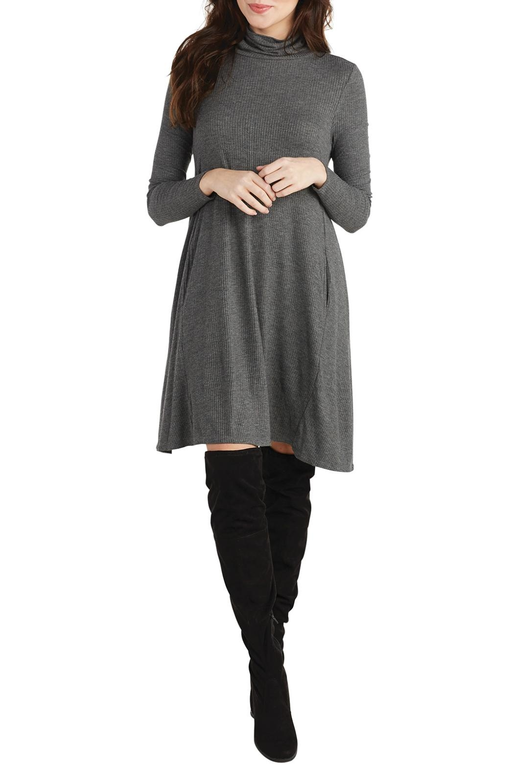 Mud Pie Turtleneck Jersey Dress - Front Cropped Image