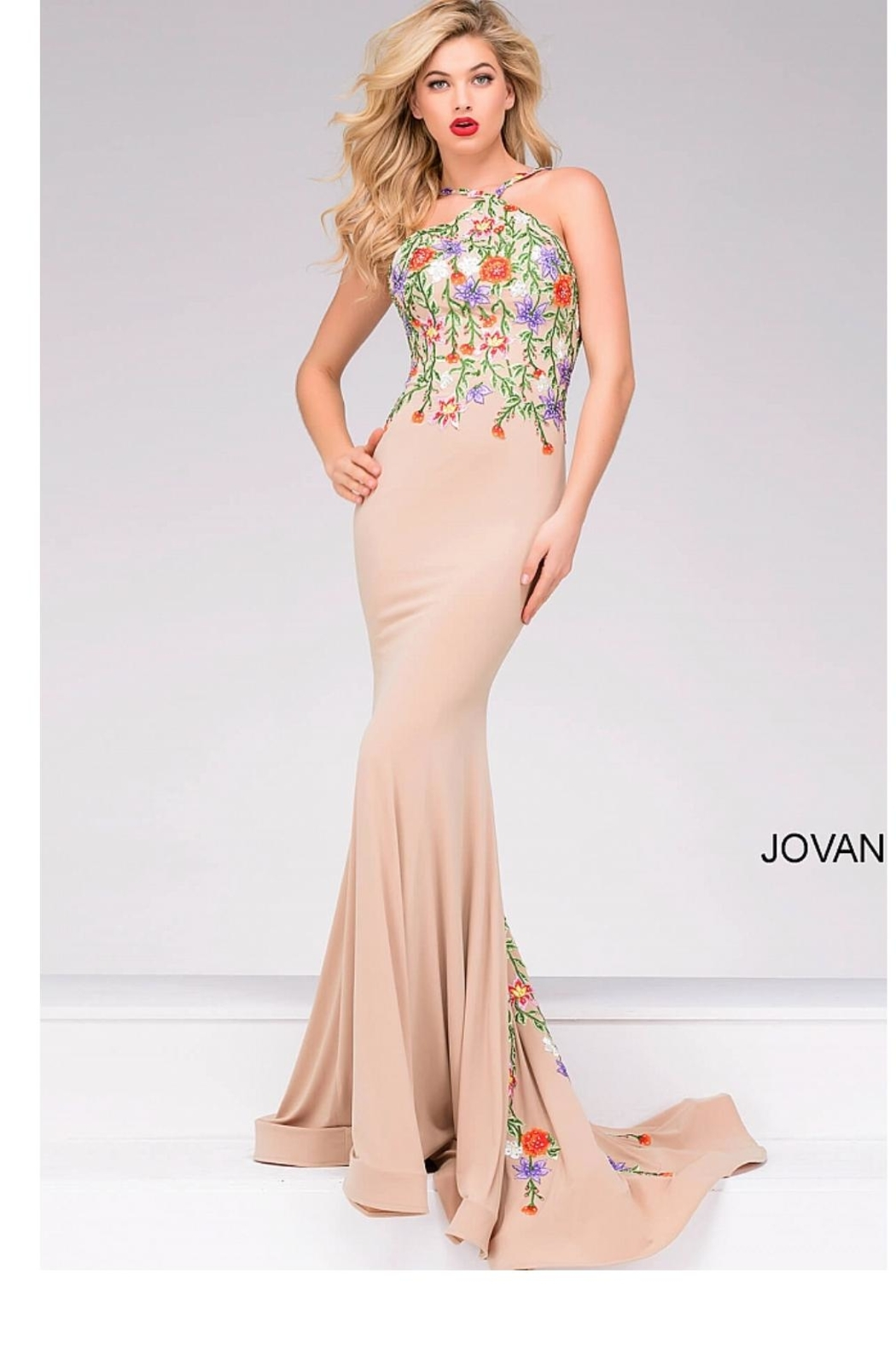 Jovani Multicolor Embroidered Gown - Front Full Image