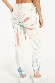z supply Multicolor Tie Dye Jogger - Other