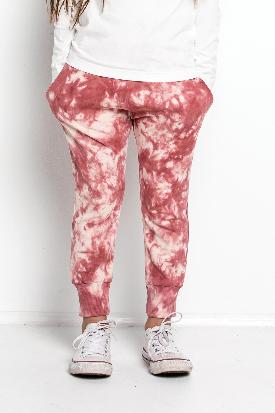 Munster Tie Dye Sweatpants - Front Cropped Image