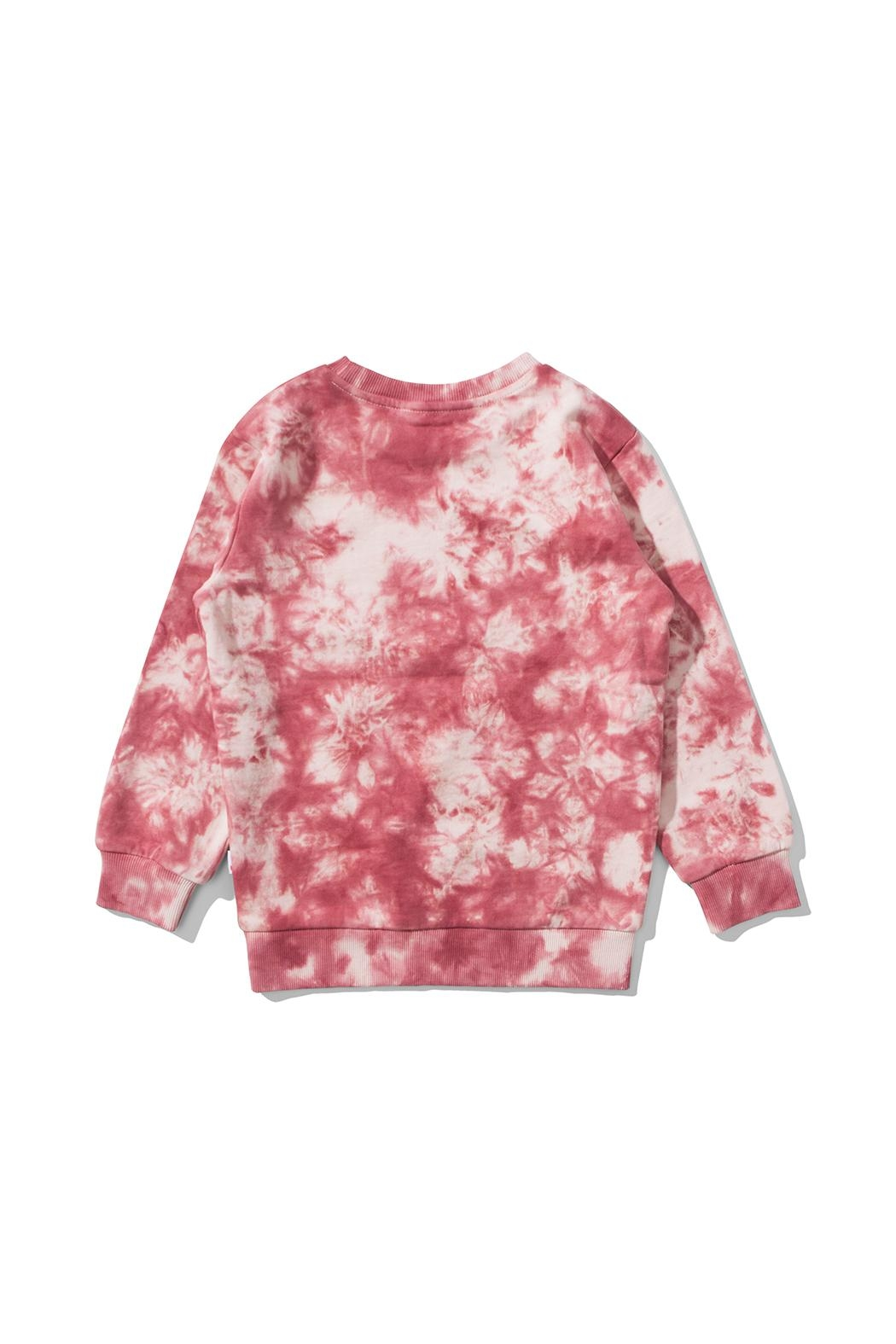 Munster Tie Dye Sweatshirt - Side Cropped Image