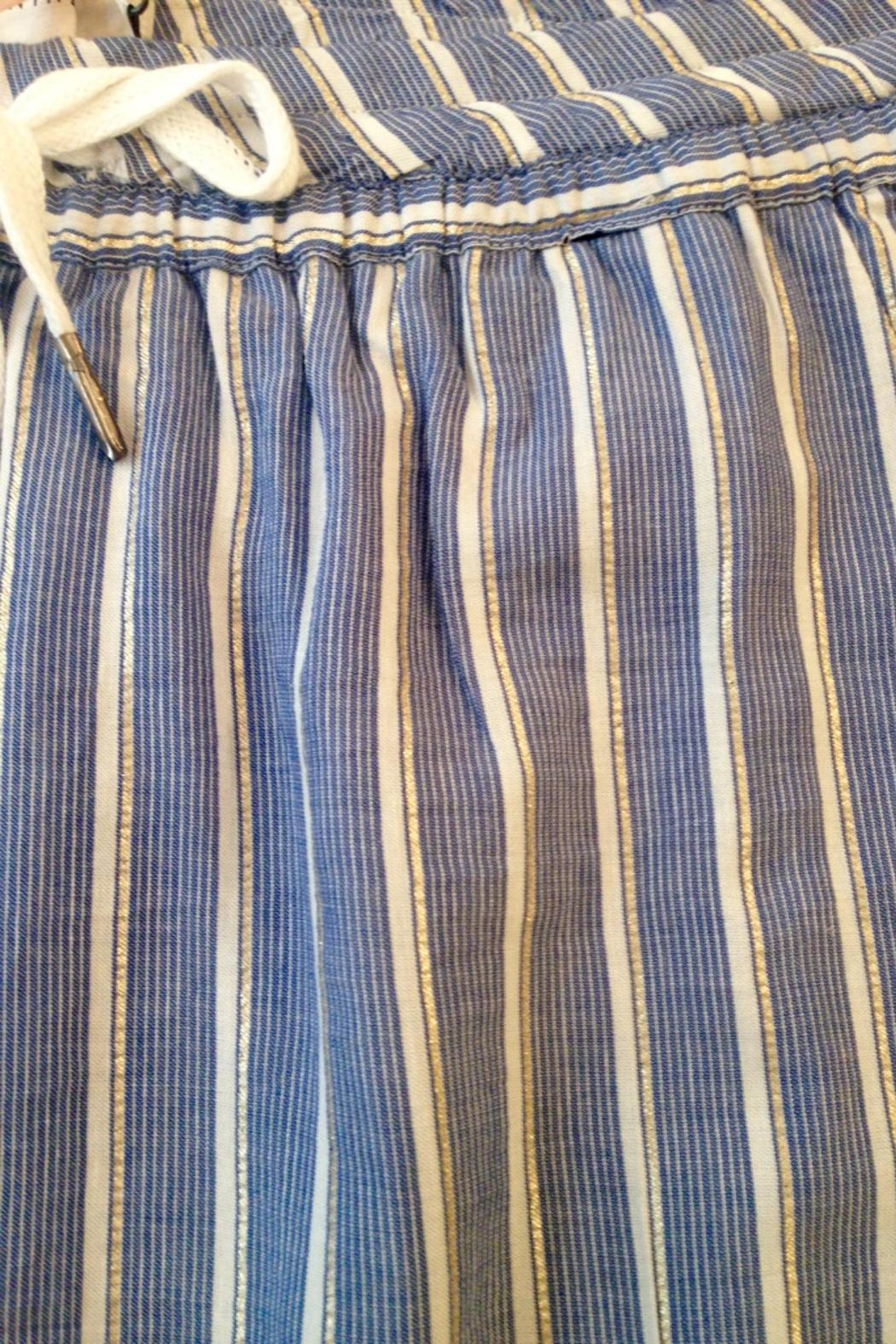 Munthe Striped Pants - Front Full Image