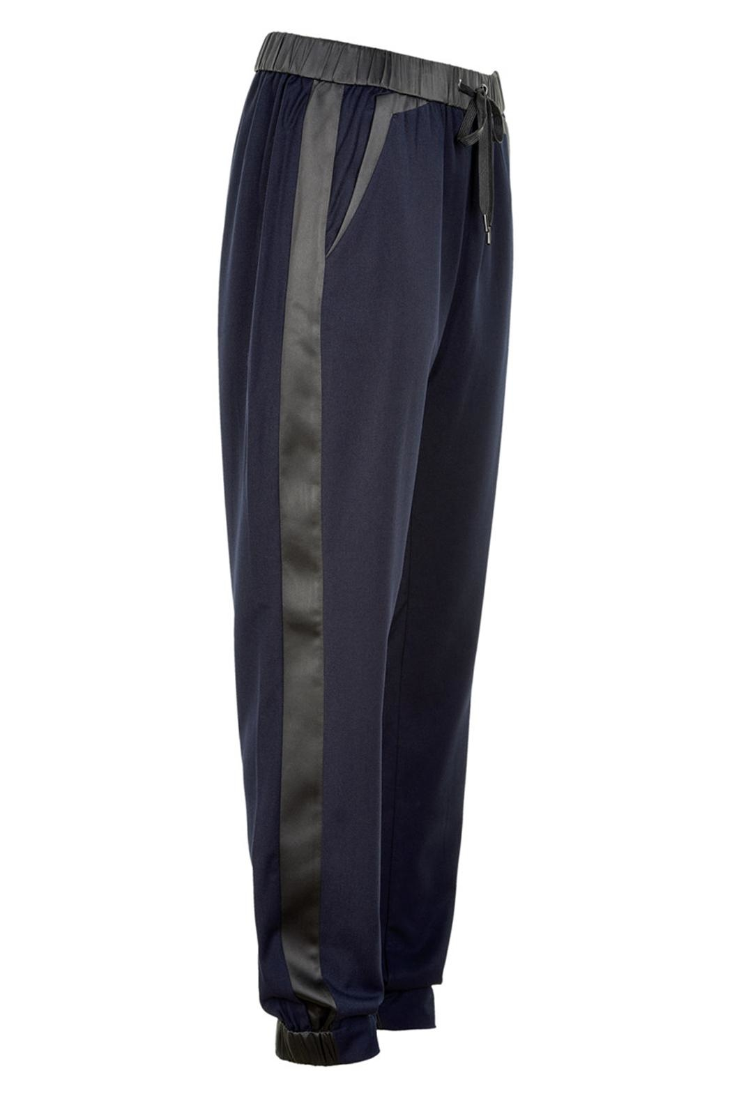 Munthe Suit Inspired Pants - Back Cropped Image