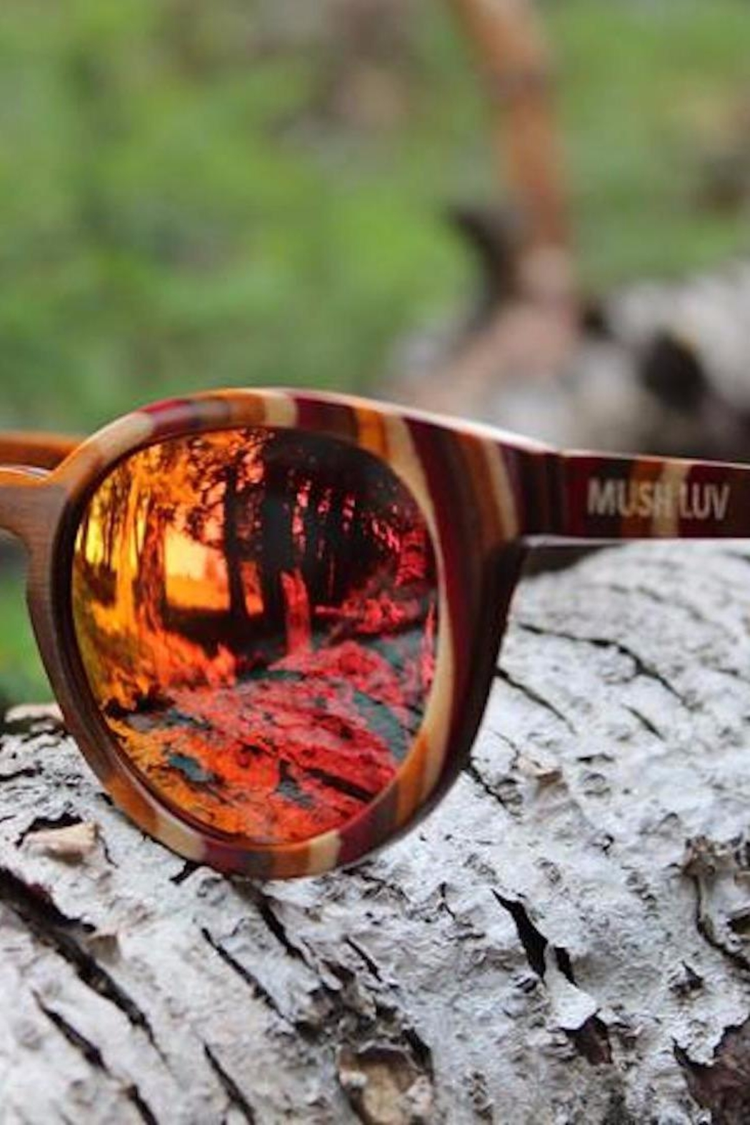 MUSH LUV EYEWEAR Twisted Forest - Front Cropped Image