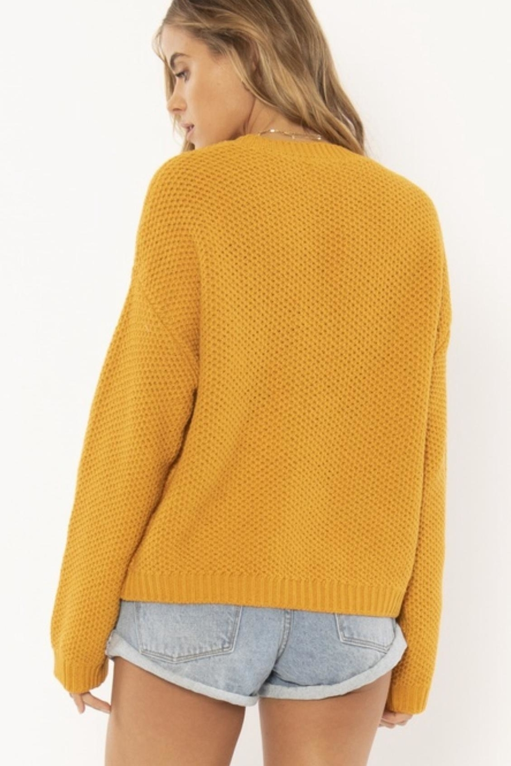 AMUSE SOCIETY Mustard Knit Sweater - Front Full Image